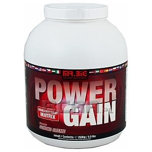 Mr. Big Power Gain 2500g 1/1