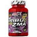 Amix Tribu 90% with ZMA