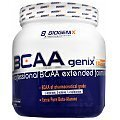 Biogenix BCAAgenix Reload