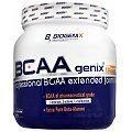 Biogenix BCAAgenix Reload
