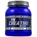 Fit Whey Tri Creatine Malate