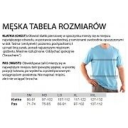 Under Armour HeatGear Compression Printed Longsleeve T-Shirt szaro-seledynowy 6/6